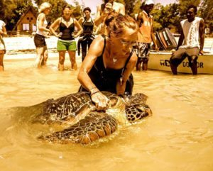Emma releases a turtle Jan 2015