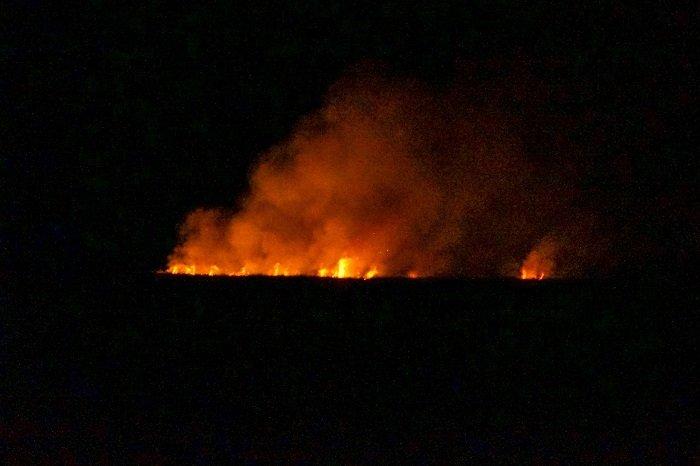 Madagascar is Burning