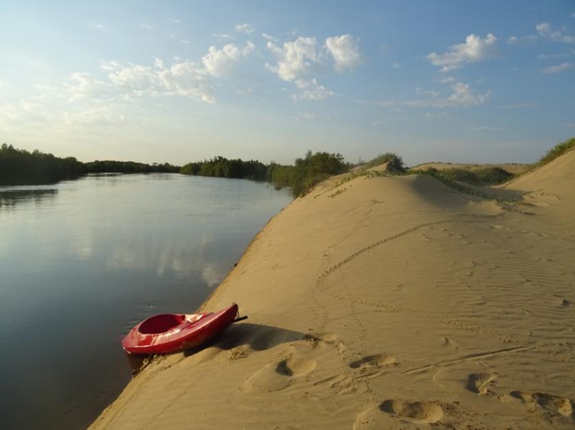 kayak mangroves beach
