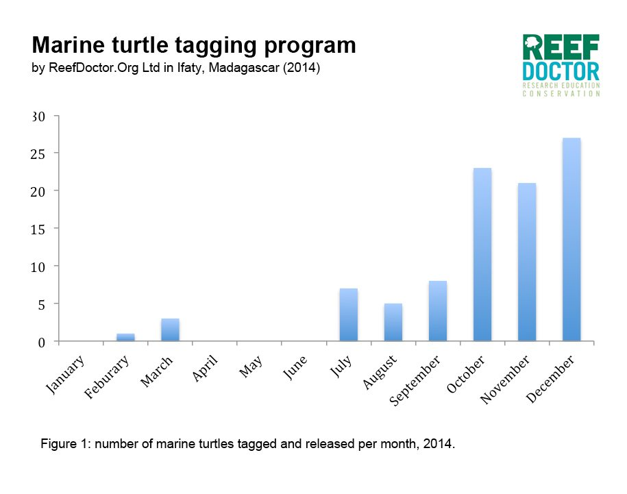 MarineTurtleTaggingProgram_statistics_dec14
