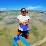 Aquaculture intern