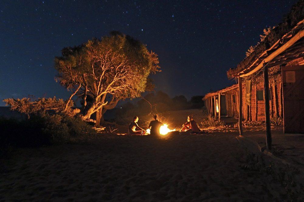 beach bonfire under stars