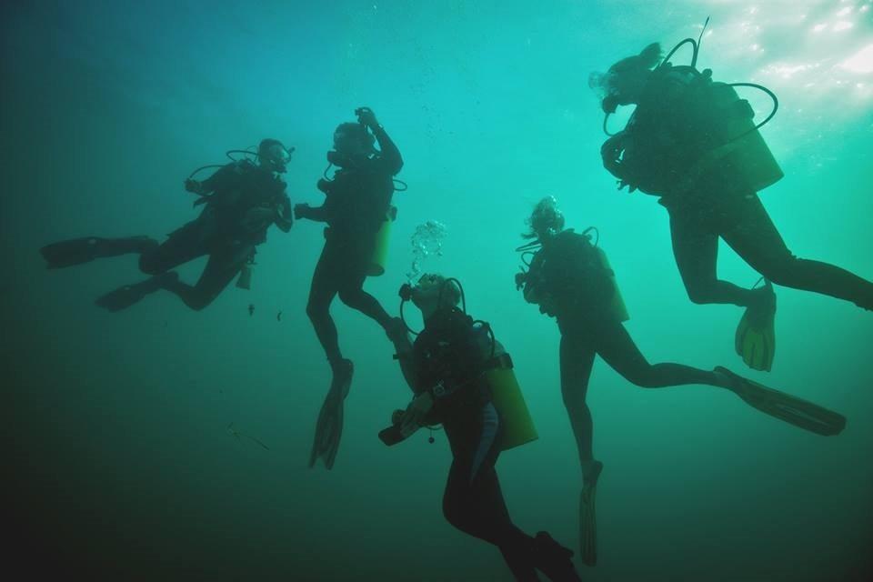 diving volunteers