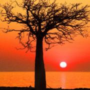ifaty sunset