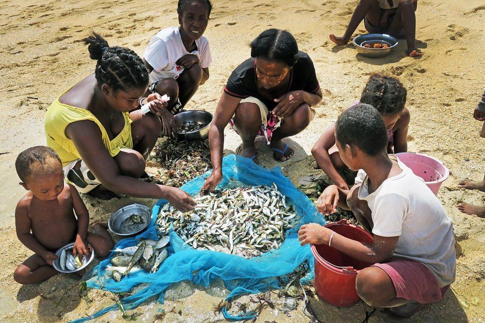 women assessing fish catch